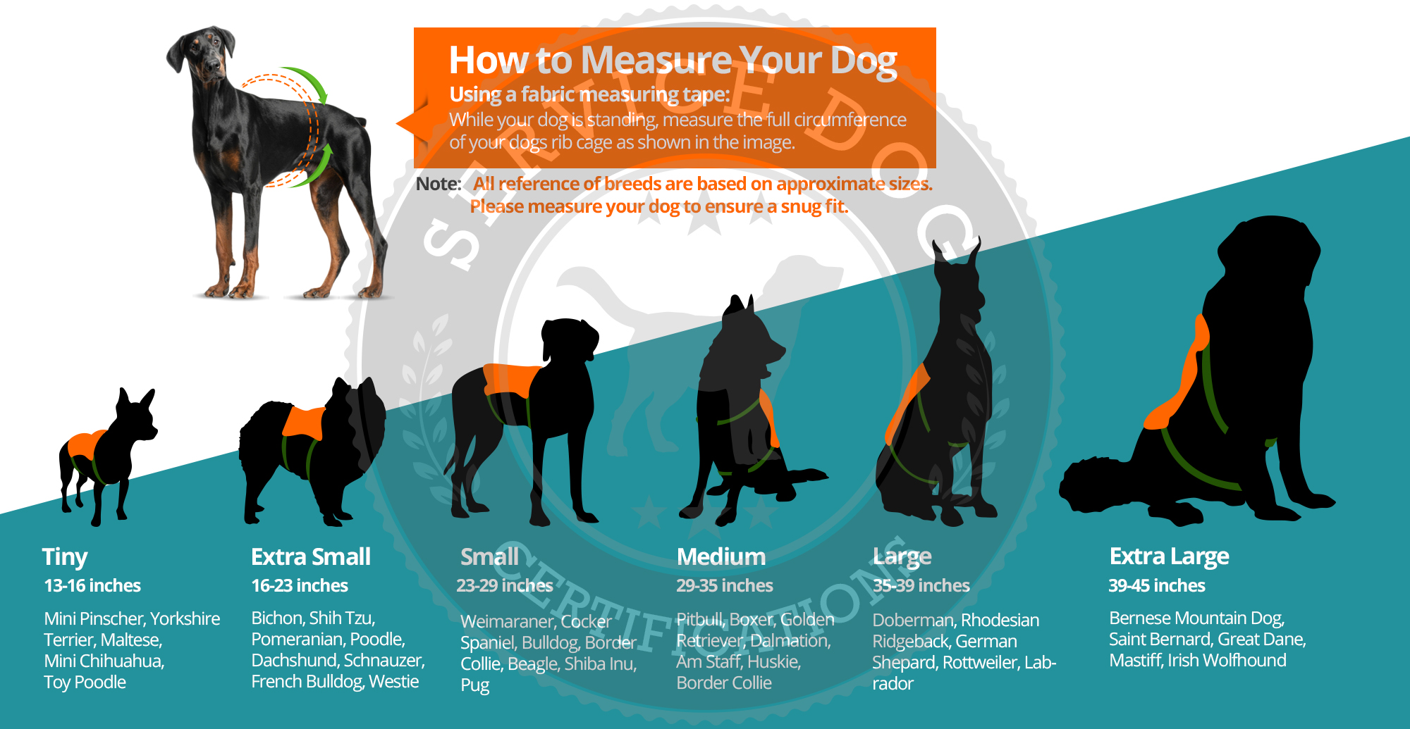 Training For Esa Dogs