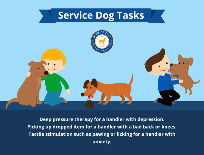 Depression Anxiety Service Dog Tasks