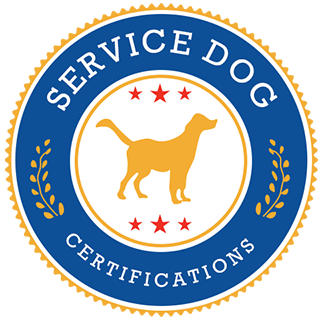 How To Train Dog For Service Dog Certification