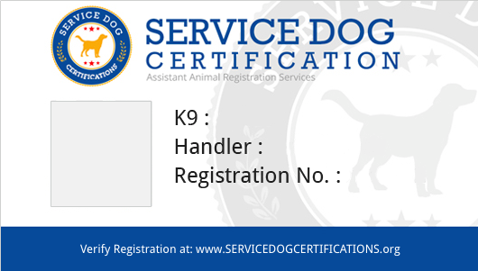 ADA Service Dog Card