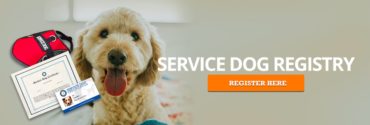 Register Service Dog Banner