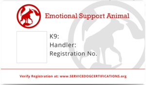 Image of: America Emotional Support Dog Certification Usa Service Dogs Registry Register Your Service Dog Today For Free Emotional Support Dog Requirements Service Dog Certifications