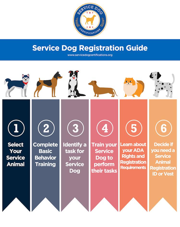 Service Dog Registration Guide