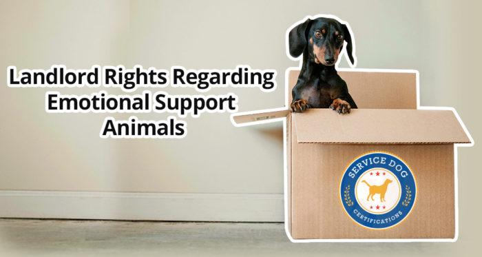 Landlord Rights Regarding Emotional Support Animals