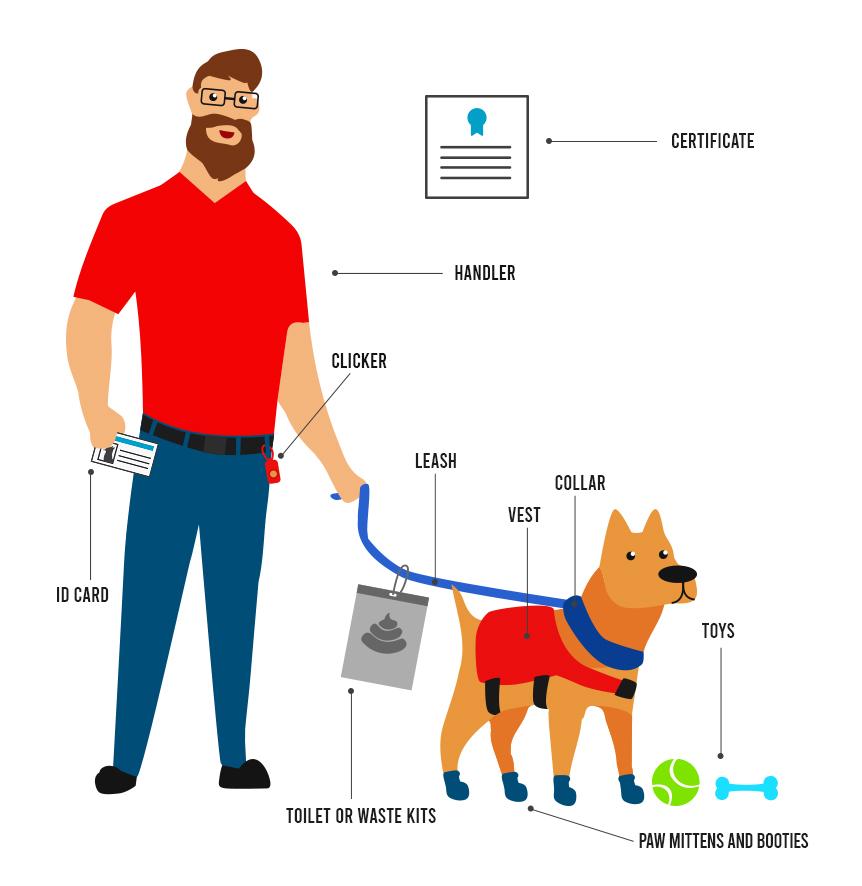 Service dog registration infographic.