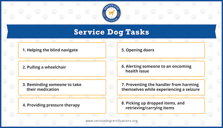 Examples of service dog tasks (infographic).