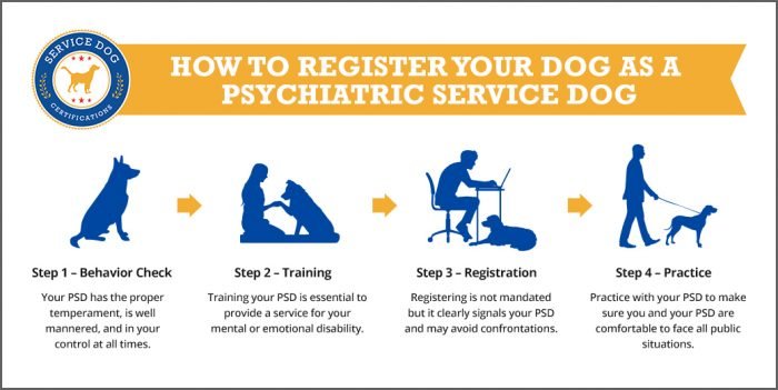 How to Register Your Dog as a Psychiatric Service Dog - ServiceDogCertifications